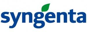 Akcja promocyjna firmy SYNGENTA. Kup nasiona! Gratis ochrona!