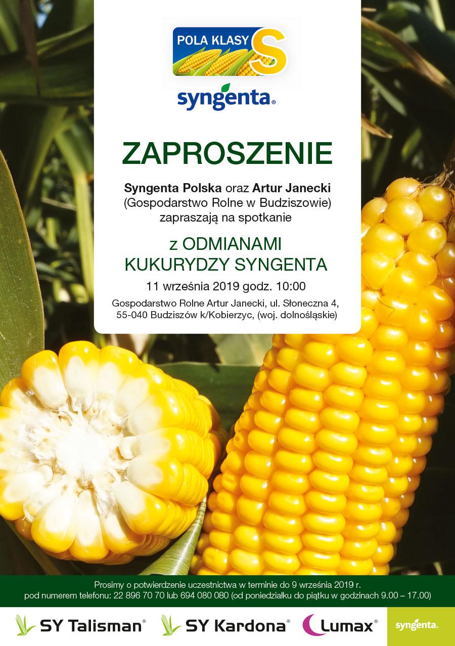 Spotkanie z odmianami kukurydzy Syngenta w Budziszowie